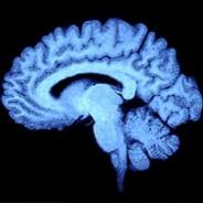 Stomping cognitive bias
